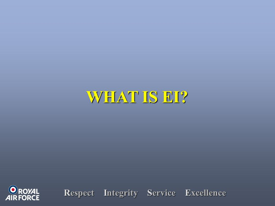Respect Integrity Service Excellence WHAT IS EI