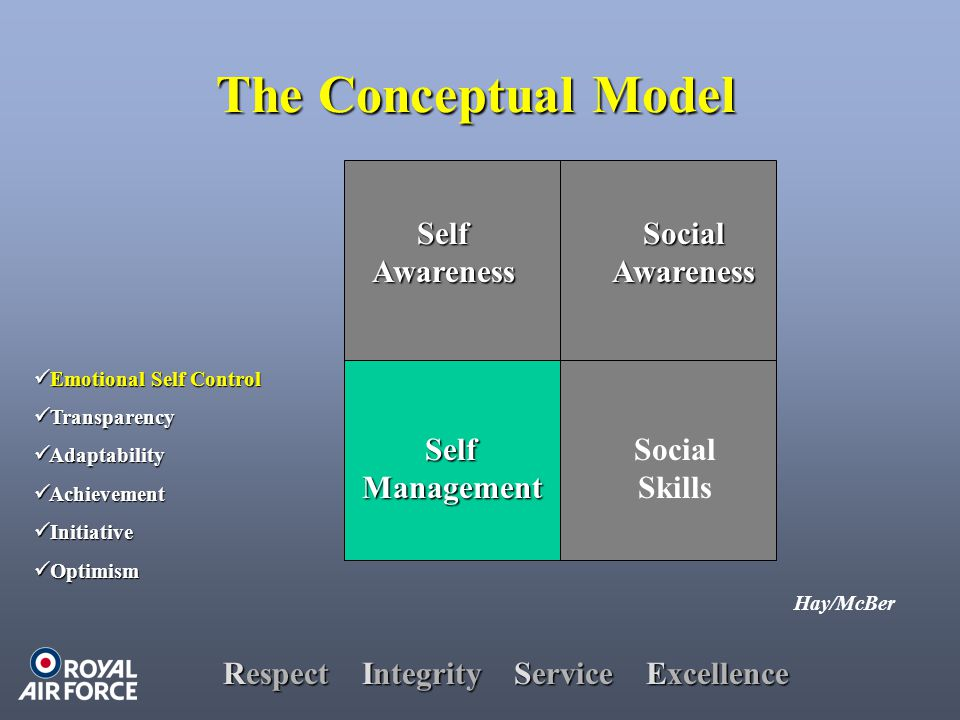Respect Integrity Service Excellence Hay/McBer SelfAwareness SelfManagement SocialAwareness Social Skills The Conceptual Model Emotional Self Control Emotional Self Control Transparency Transparency Adaptability Adaptability Achievement Achievement Initiative Initiative Optimism Optimism