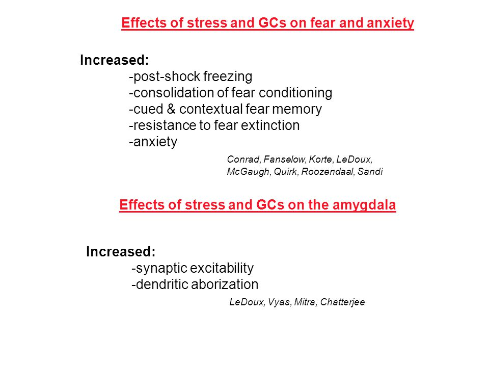 Effects of stress and GCs on fear and anxiety Increased: -post-shock freezing -consolidation of fear conditioning -cued & contextual fear memory -resistance to fear extinction -anxiety Conrad, Fanselow, Korte, LeDoux, McGaugh, Quirk, Roozendaal, Sandi Effects of stress and GCs on the amygdala Increased: -synaptic excitability -dendritic aborization LeDoux, Vyas, Mitra, Chatterjee