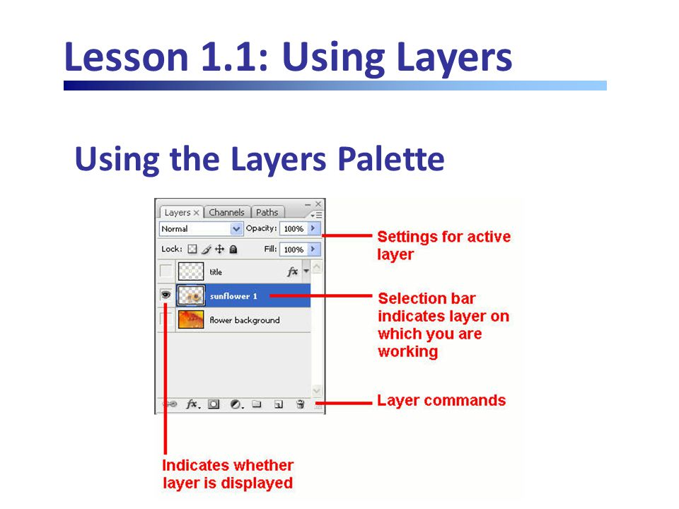 Lesson 1.4: Advanced Layers Merging Layers Merge Visible from palette options menu