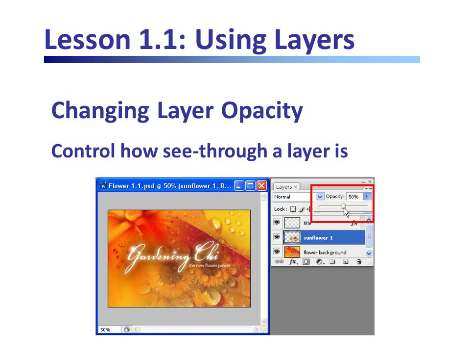 Lesson 1.1: Using Layers Changing Layer Opacity Control how see-through a layer is