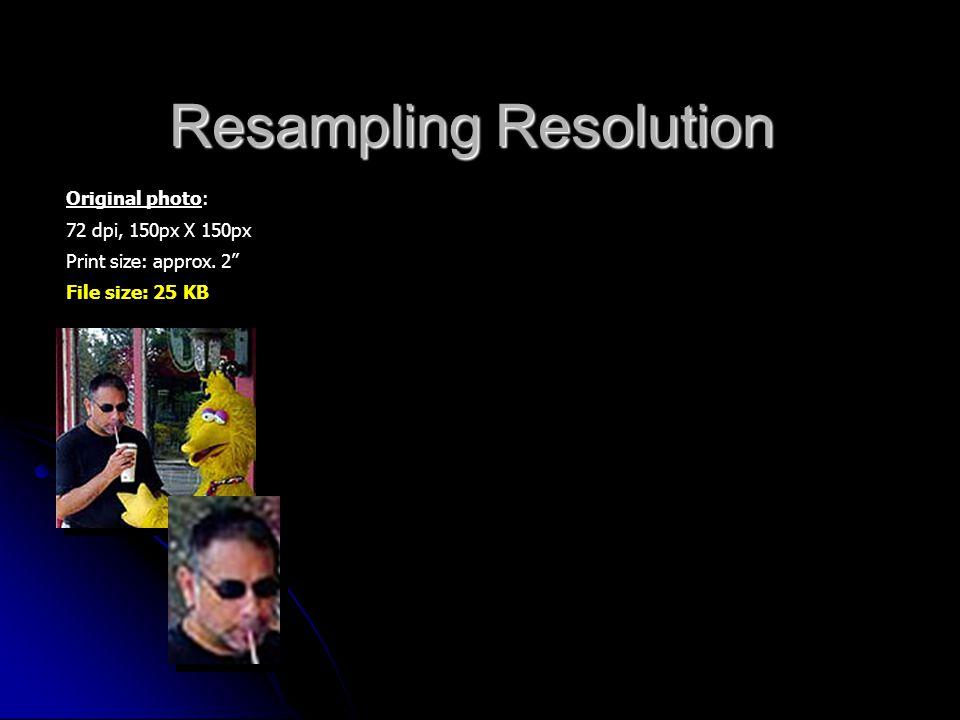 "Resampling Resolution Original photo: 72 dpi, 150px X 150px Print size: approx. 2"" File size: 25 KB"