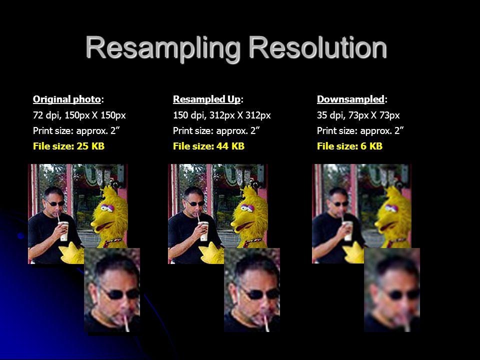 "Resampling Resolution Original photo: 72 dpi, 150px X 150px Print size: approx. 2"" File size: 25 KB Resampled Up: 150 dpi, 312px X 312px Print size: a"