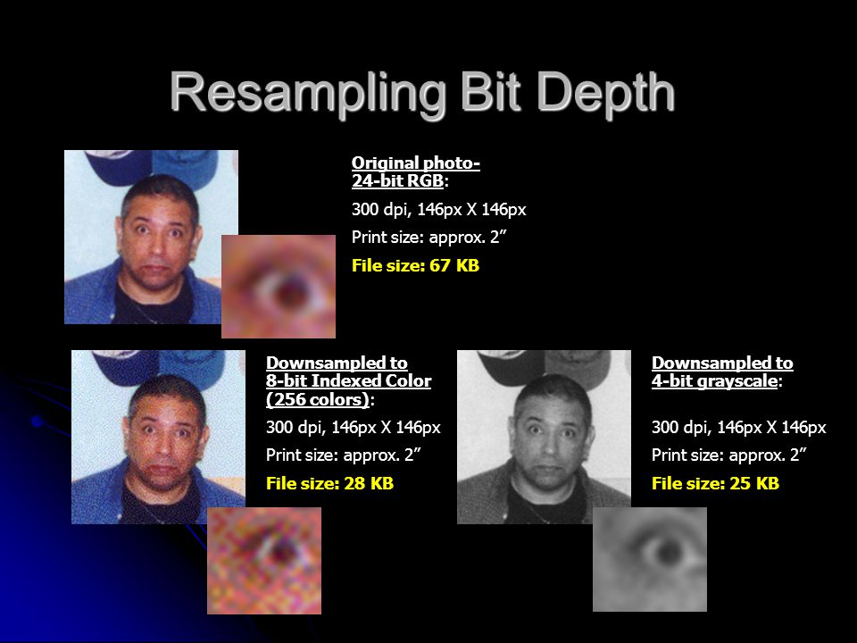 "Resampling Bit Depth Original photo- 24-bit RGB: 300 dpi, 146px X 146px Print size: approx. 2"" File size: 67 KB Downsampled to 8-bit Indexed Color (25"