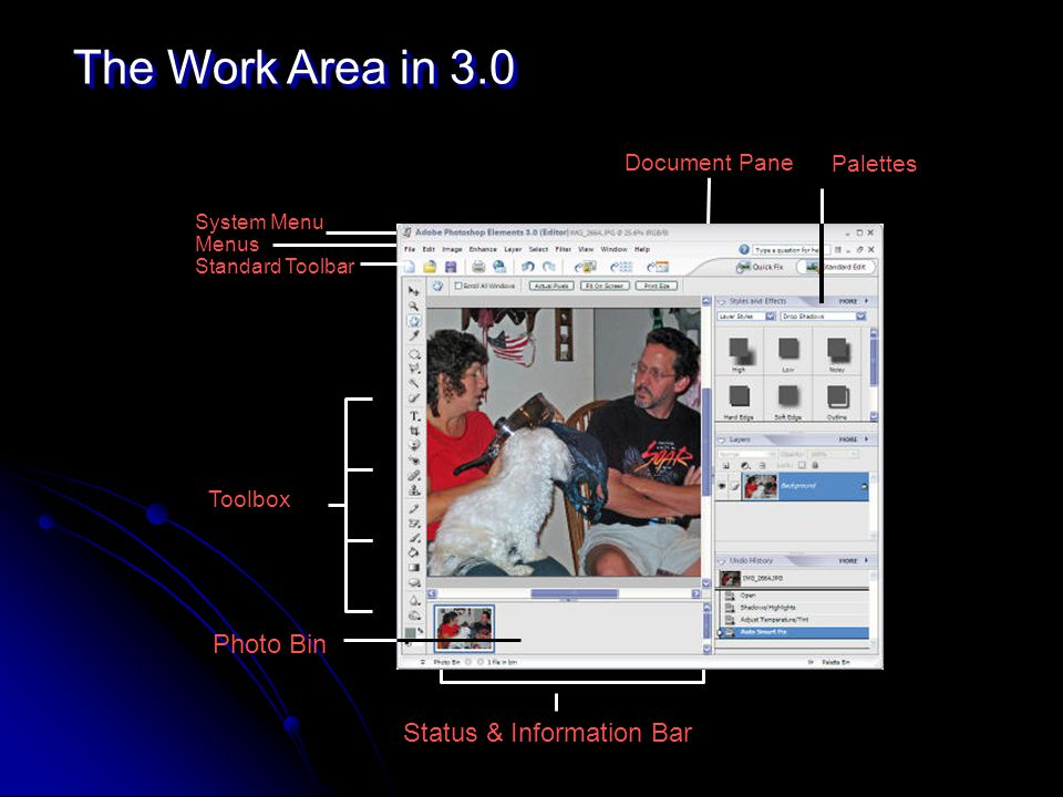 The Work Area in 3.0 Toolbox Status & Information Bar Document Pane Palettes System Menu Menus Standard Toolbar Photo Bin