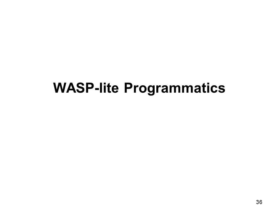 36 WASP-lite Programmatics