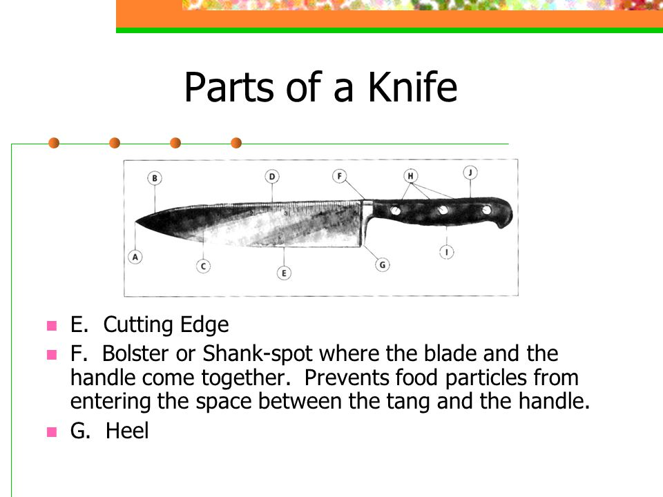 Types of Knives Butcher Knife Has a 6-14 rigid blade whose tip curves up at a 25° angle.