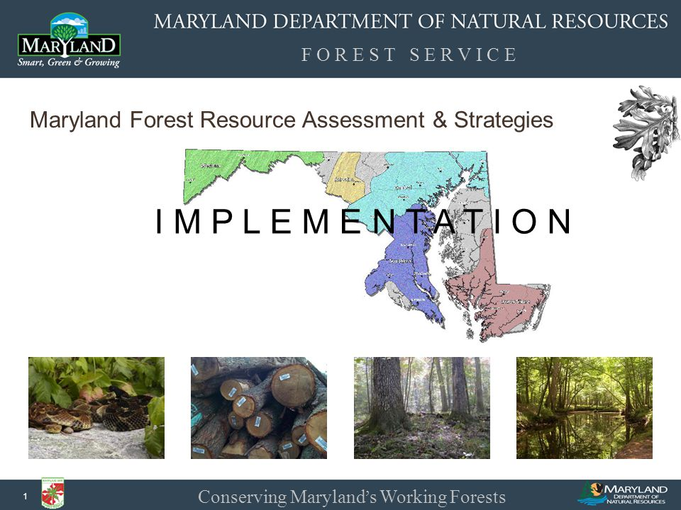 F O R E S T S E R V I C E Conserving Maryland ' s Working Forests 2 A statewide forest assessment and strategies… …in two years.