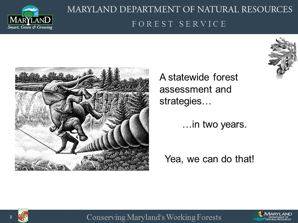 F O R E S T S E R V I C E Conserving Maryland ' s Working Forests 13 Stakeholder Outreach Department of Natural Resources Department of the Environment Department of Agriculture Department of Planning Maryland Environmental Services University of Maryland Maryland Environmental Trust Maryland Association of Counties Maryland Municipal League Maryland Association of Forest Industries Maryland Forests Association Partnership for Sustainable Forestry Maryland Assoc.