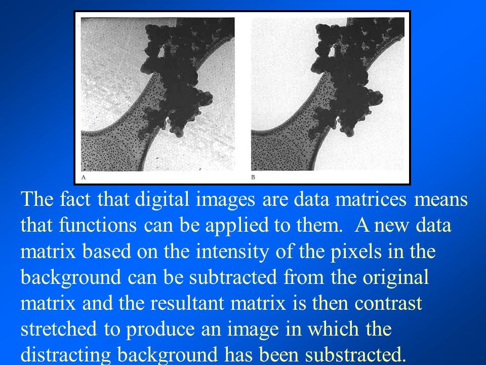 The fact that digital images are data matrices means that functions can be applied to them. A new data matrix based on the intensity of the pixels in