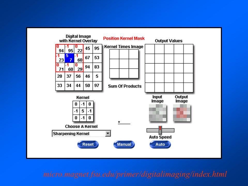 micro.magnet.fsu.edu/primer/digitalimaging/index.html