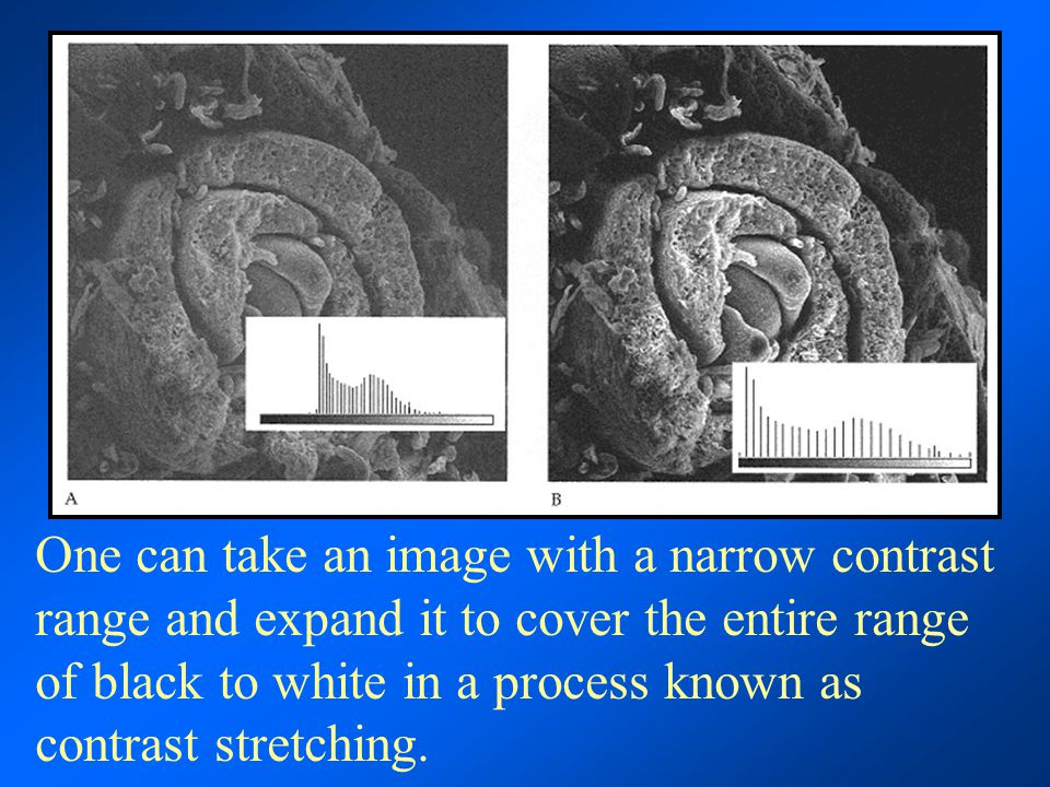 One can take an image with a narrow contrast range and expand it to cover the entire range of black to white in a process known as contrast stretching