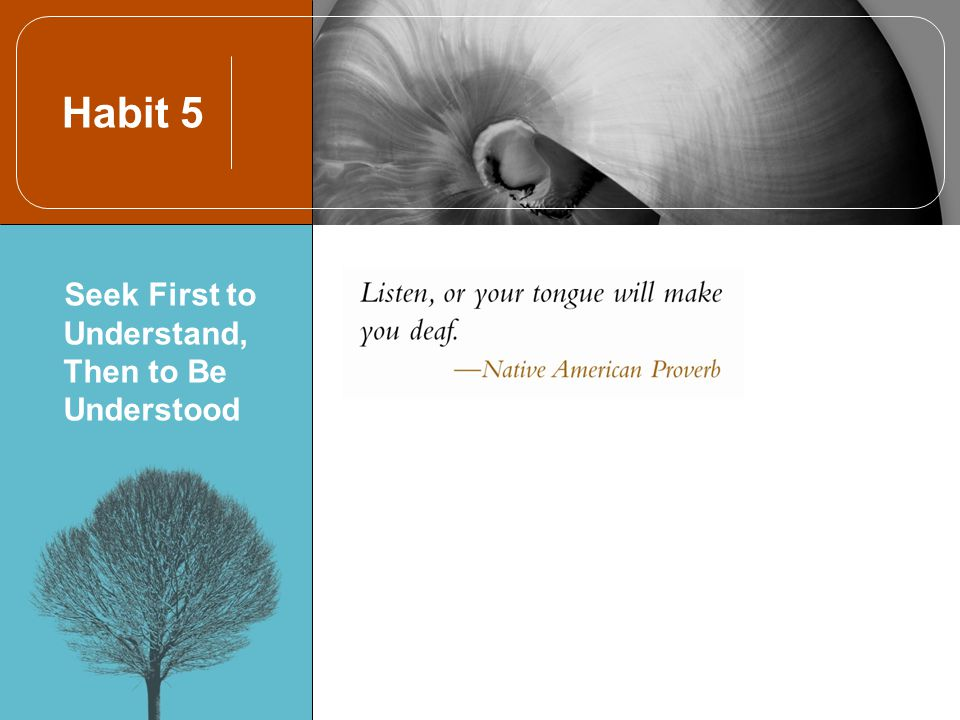 Habit 5 Seek First to Understand, Then to Be Understood