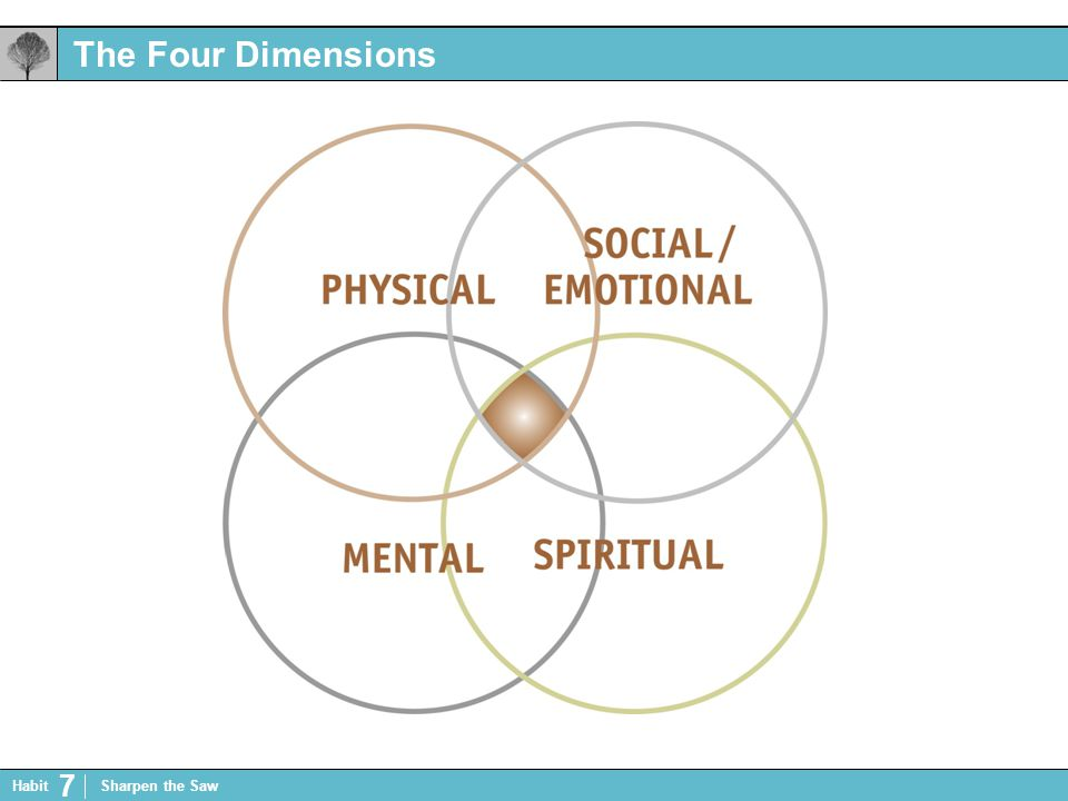 The Four Dimensions Habit 7 Sharpen the Saw
