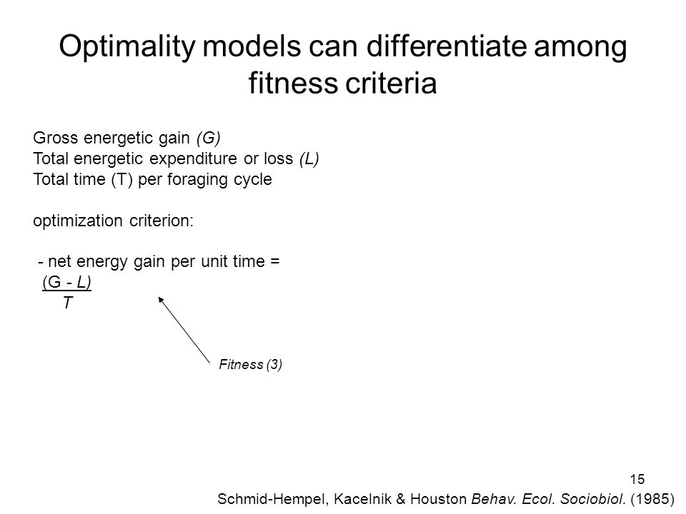 15 Optimality models can differentiate among fitness criteria Fitness (3) Schmid-Hempel, Kacelnik & Houston Behav.