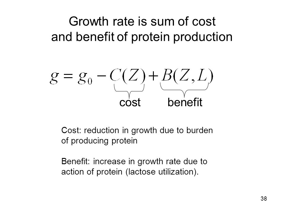 38 Growth rate is sum of cost and benefit of protein production Cost: reduction in growth due to burden of producing protein Benefit: increase in grow