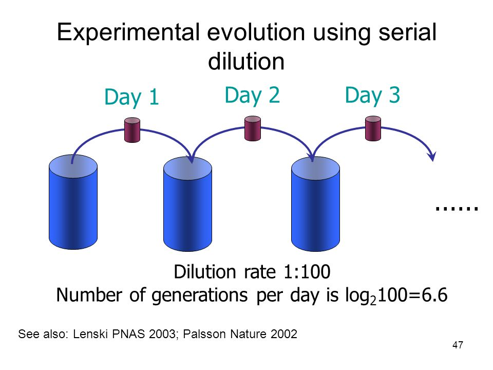 47 Experimental evolution using serial dilution Day 1 Day 2Day 3...... Dilution rate 1:100 Number of generations per day is log 2 100=6.6 See also: Le