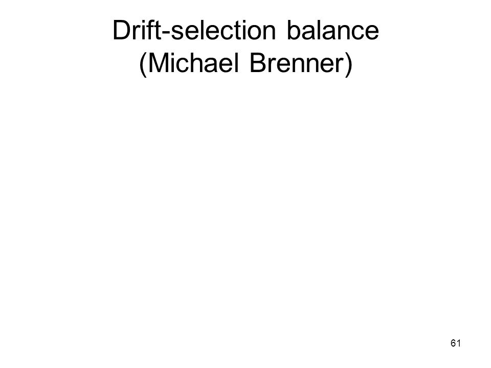 61 Drift-selection balance (Michael Brenner)