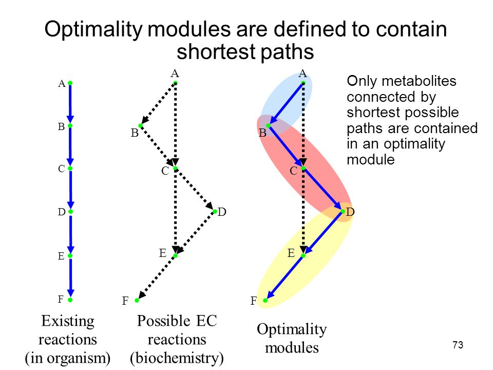 73 Optimality modules are defined to contain shortest paths Only metabolites connected by shortest possible paths are contained in an optimality module Existing reactions (in organism) Possible EC reactions (biochemistry) Optimality modules A B C D E F A B C D E F A B C D E F