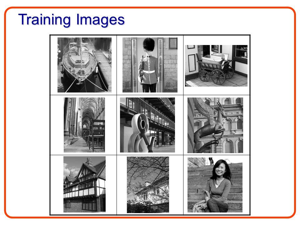 Training Images