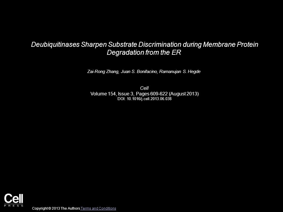 Deubiquitinases Sharpen Substrate Discrimination during Membrane Protein Degradation from the ER Zai-Rong Zhang, Juan S.