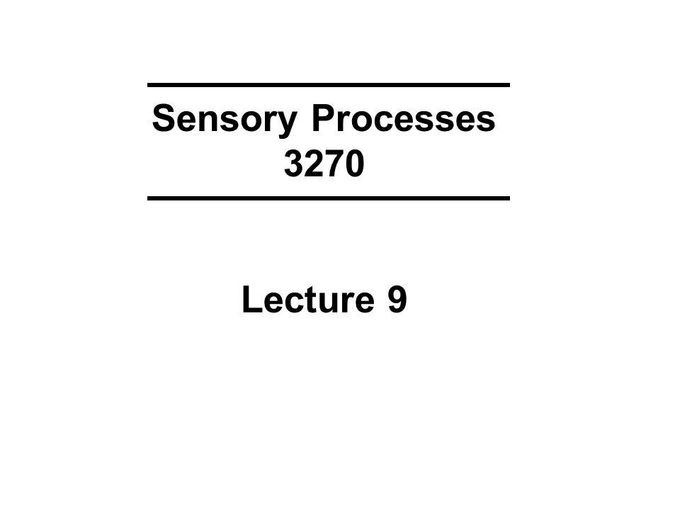 Sensory Processes 3270 Lecture 9