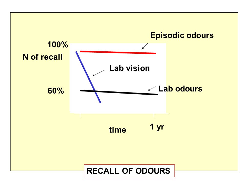 time 1 yr N of recall 100% 60% Episodic odours Lab odours Lab vision RECALL OF ODOURS