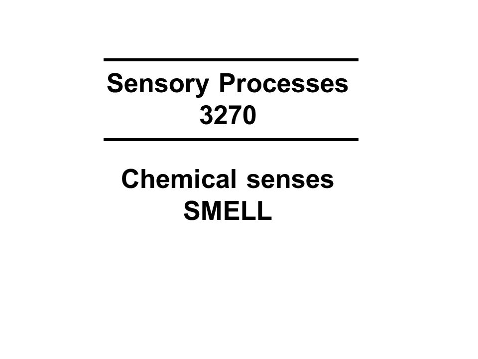 Sensory Processes 3270 Chemical senses SMELL