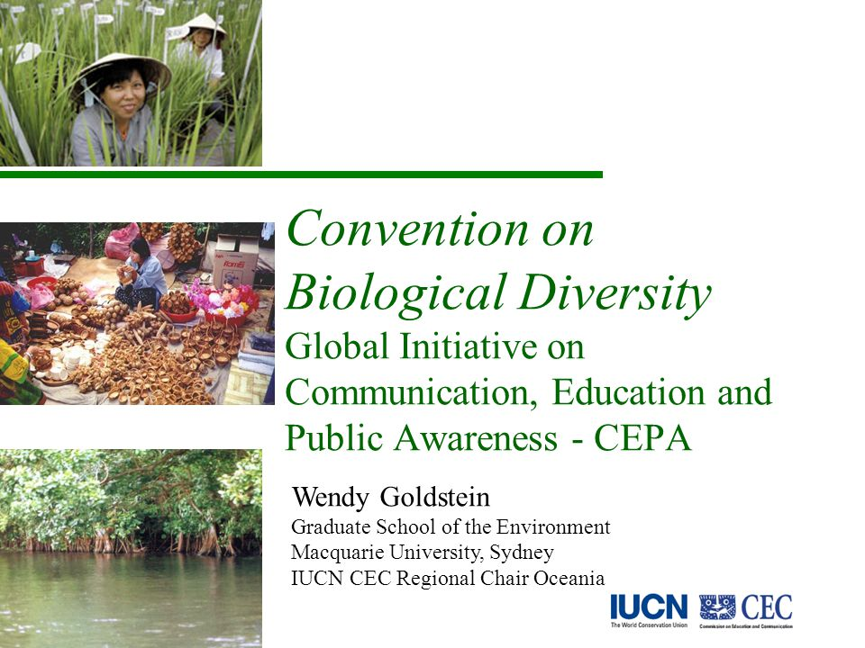 Convention on Biological Diversity Global Initiative on Communication, Education and Public Awareness - CEPA Wendy Goldstein Graduate School of the Environment Macquarie University, Sydney IUCN CEC Regional Chair Oceania