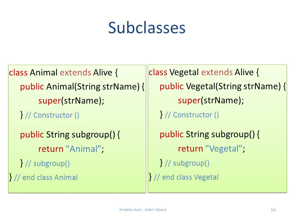 14 Amadeo Ascó, Adam Moore class Animal extends Alive { public Animal(String strName) { super(strName); } // Constructor () public String subgroup() {