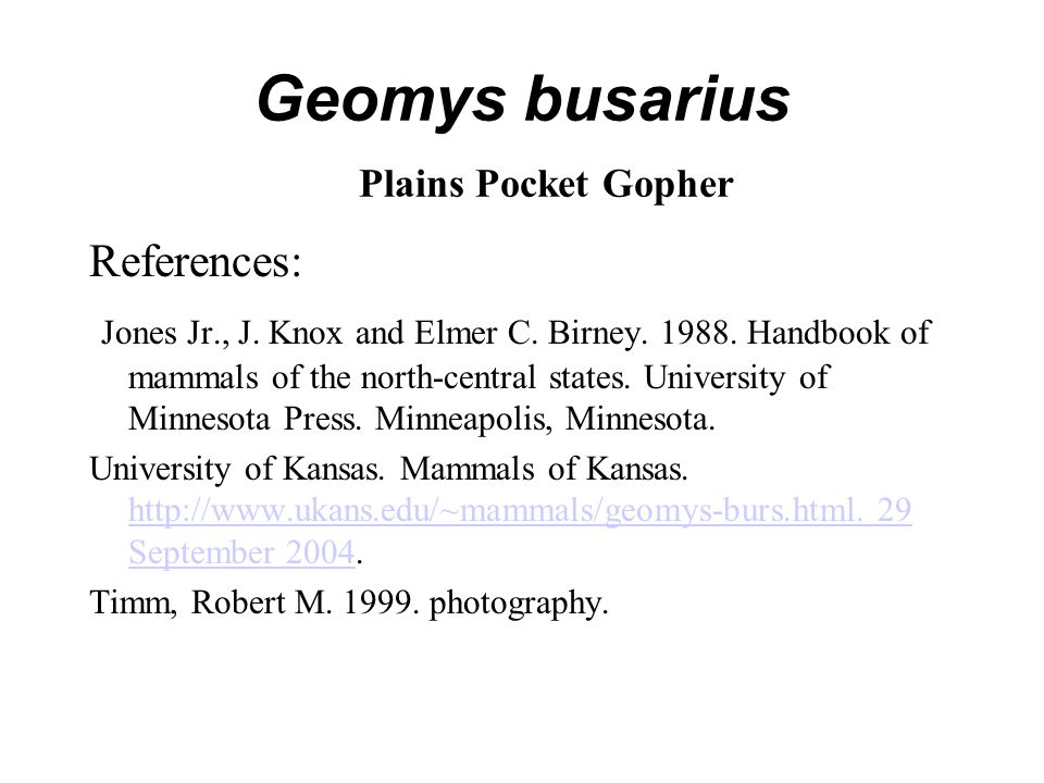 Geomys busarius Plains Pocket Gopher References: Jones Jr., J. Knox and Elmer C. Birney. 1988. Handbook of mammals of the north-central states. Univer