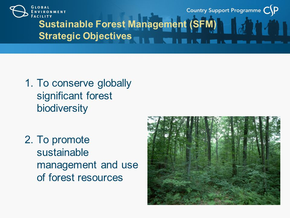 Sustainable Forest Management (SFM) Strategic Objectives 1.To conserve globally significant forest biodiversity 2.To promote sustainable management and use of forest resources