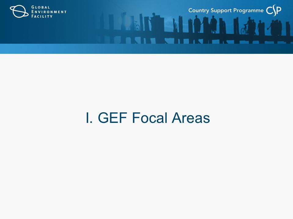 I. GEF Focal Areas