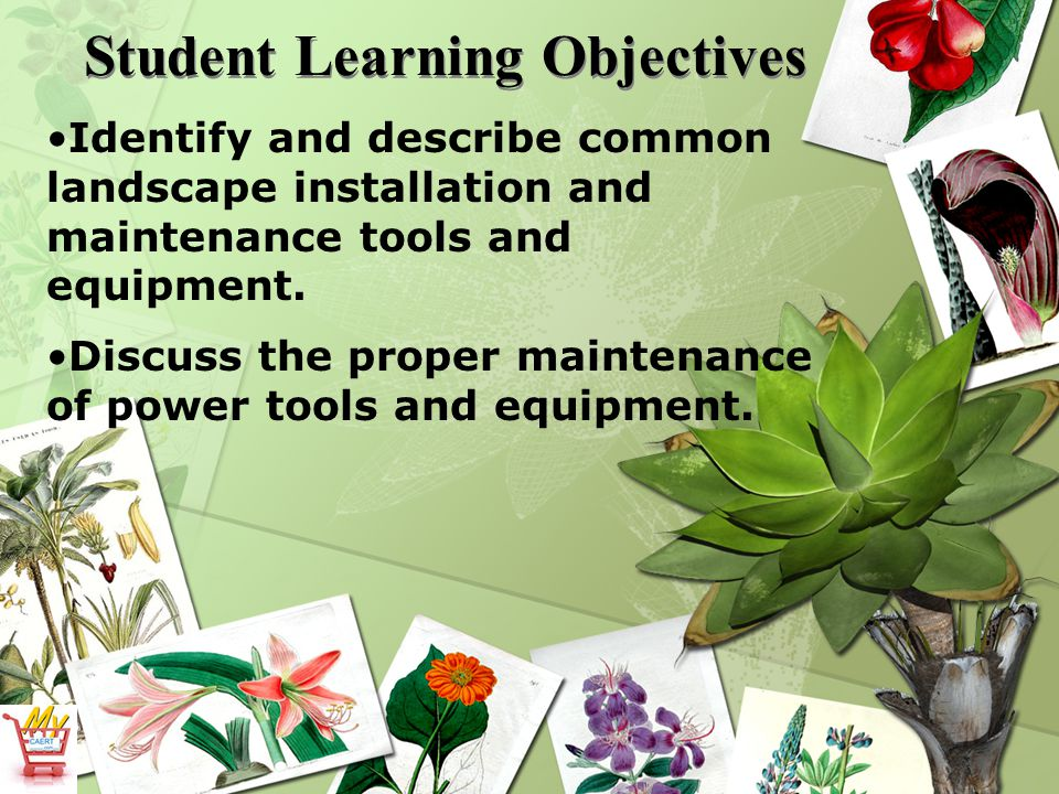 Student Learning Objectives Identify and describe common landscape installation and maintenance tools and equipment.