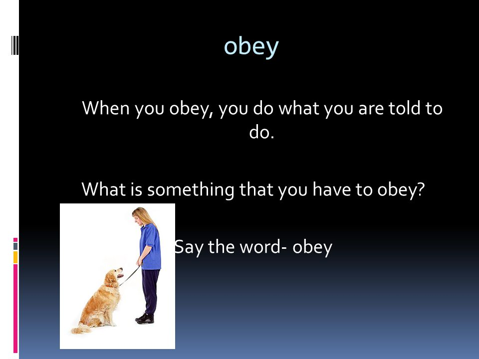 obey When you obey, you do what you are told to do.