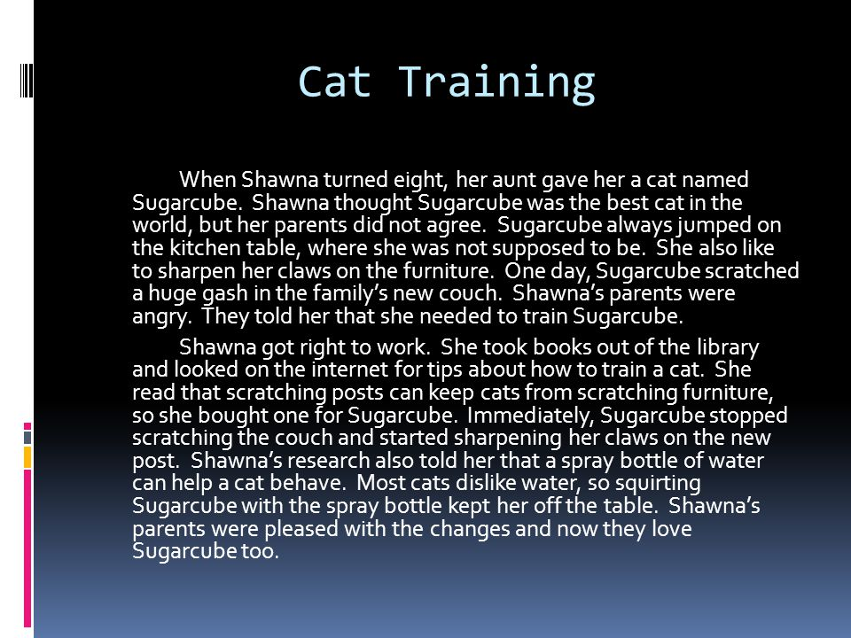 Cat Training When Shawna turned eight, her aunt gave her a cat named Sugarcube.