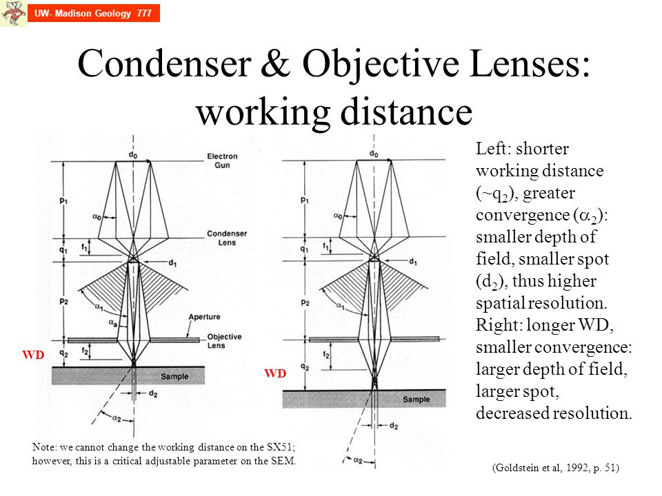 Condenser & Objective Lenses: working distance (Goldstein et al, 1992, p. 51) Left: shorter working distance (~q 2 ), greater convergence (  2 ): sma