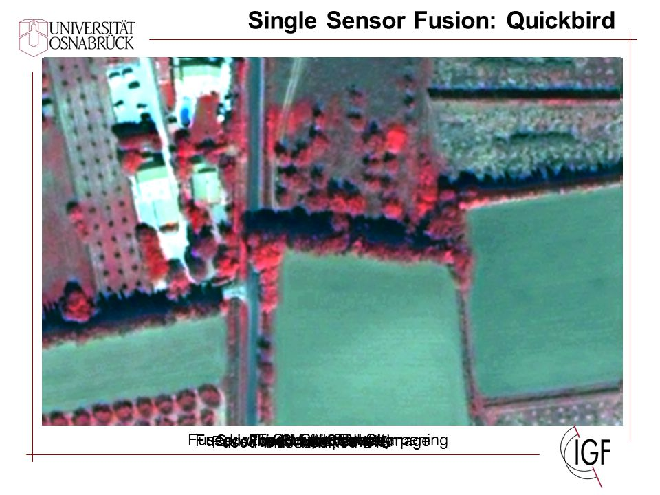 Multisensor Fusion: Ikonos Ikonos Multispectral image Fused with BroveyFused with CN Spectral Sharpening Fused with Ehlers Fused with modified IHS Fused with PCFused with Gram-Schmidt Fused with Wavelet