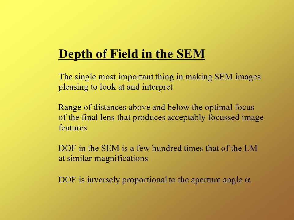 Depth of Field in the SEM The single most important thing in making SEM images pleasing to look at and interpret Range of distances above and below the optimal focus of the final lens that produces acceptably focussed image features DOF in the SEM is a few hundred times that of the LM at similar magnifications DOF is inversely proportional to the aperture angle 