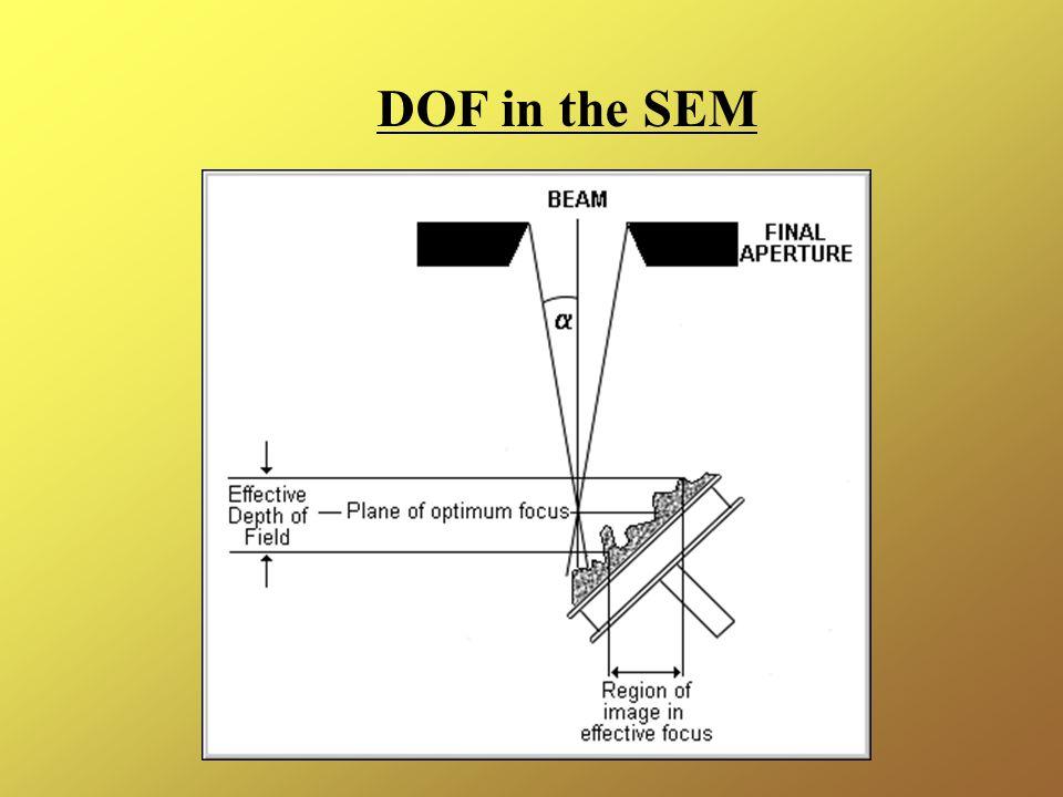 DOF in the SEM