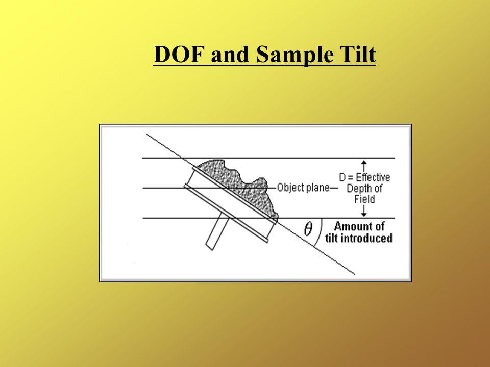 DOF and Sample Tilt