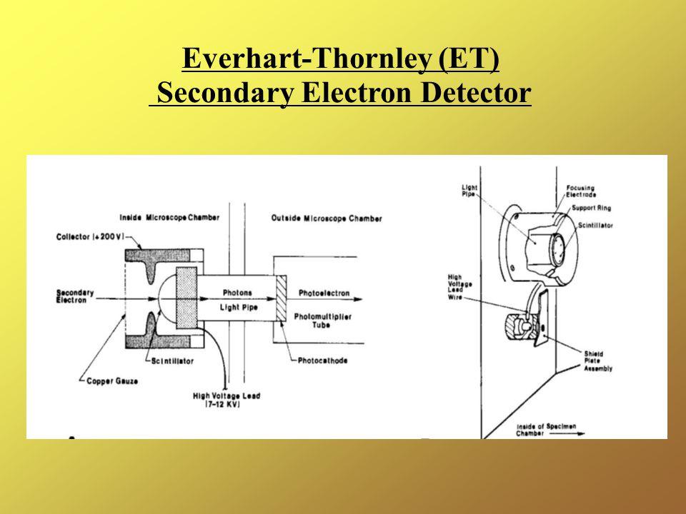 Everhart-Thornley (ET) Secondary Electron Detector