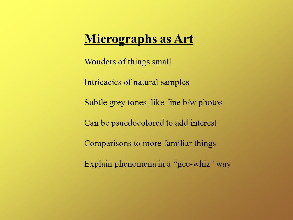 Micrographs as Art Wonders of things small Intricacies of natural samples Subtle grey tones, like fine b/w photos Can be psuedocolored to add interest Comparisons to more familiar things Explain phenomena in a gee-whiz way