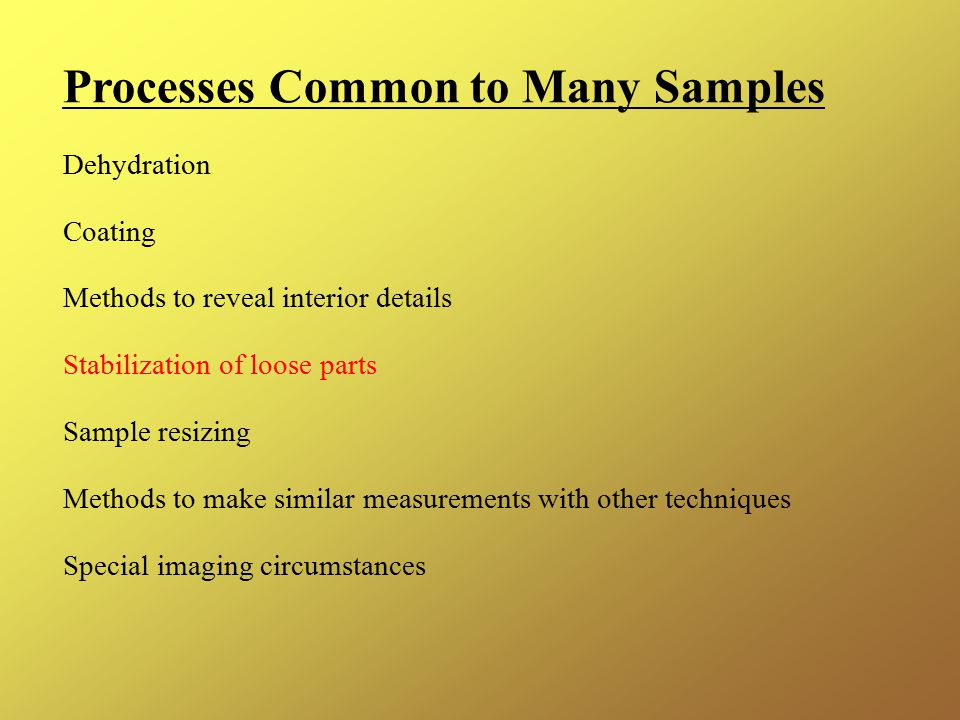 Processes Common to Many Samples Dehydration Coating Methods to reveal interior details Stabilization of loose parts Sample resizing Methods to make similar measurements with other techniques Special imaging circumstances