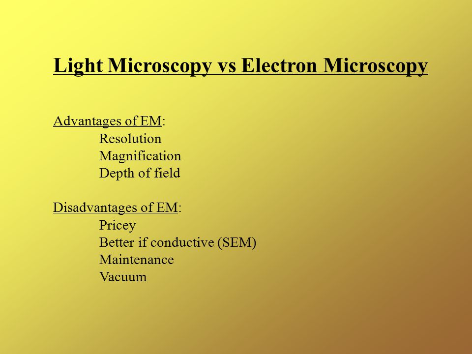 Light Microscopy vs Electron Microscopy Advantages of EM: Resolution Magnification Depth of field Disadvantages of EM: Pricey Better if conductive (SEM) Maintenance Vacuum