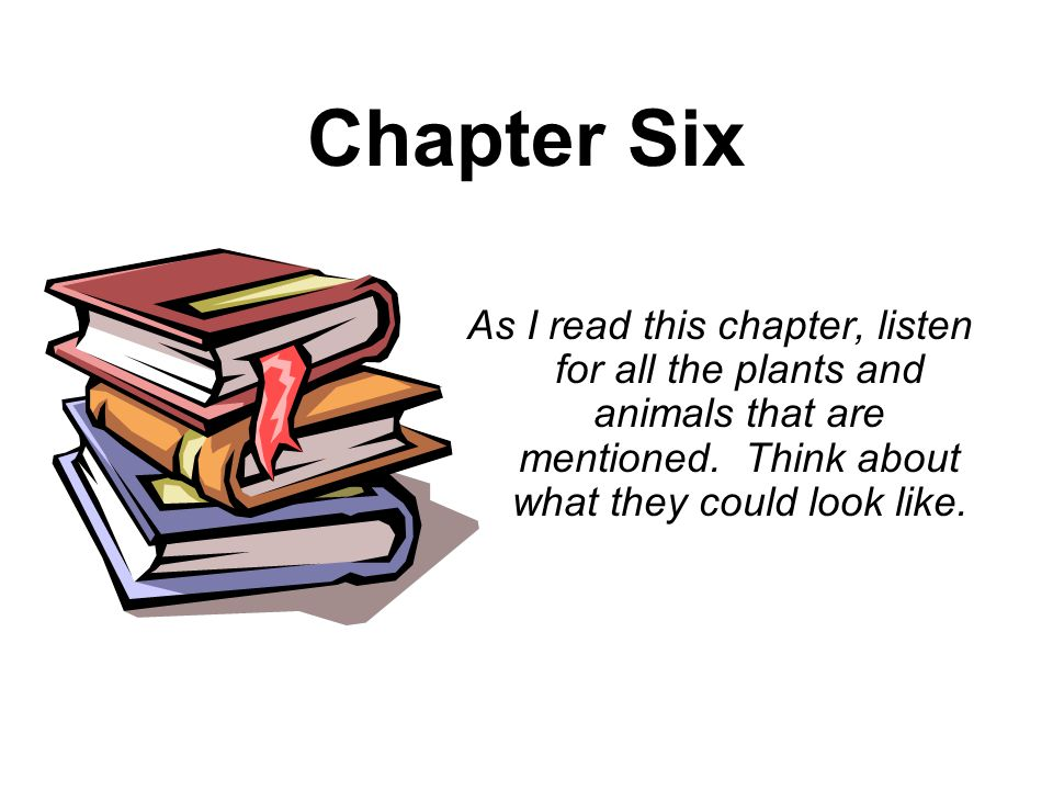 Chapter Six As I read this chapter, listen for all the plants and animals that are mentioned. Think about what they could look like.