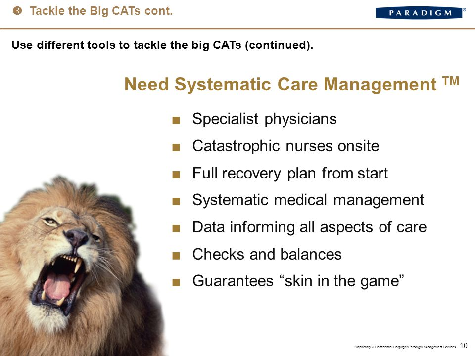 10 Use different tools to tackle the big CATs (continued).