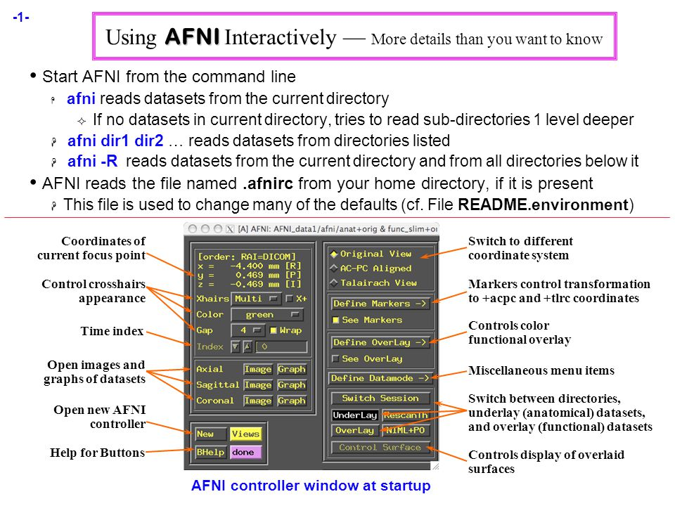 -1- AFNI Using AFNI Interactively — More details than you want to know Start AFNI from the command line  afni reads datasets from the current directory  If no datasets in current directory, tries to read sub-directories 1 level deeper  afni dir1 dir2 … reads datasets from directories listed  afni -R reads datasets from the current directory and from all directories below it AFNI reads the file named.afnirc from your home directory, if it is present  This file is used to change many of the defaults (cf.