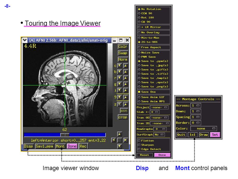 -8- Touring the Image Viewer Image viewer window Disp and Mont control panels
