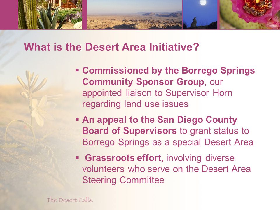 What is the Desert Area Initiative.